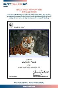 Bùi Anh Tuấn và chú hổ thuộc họ Sumatra