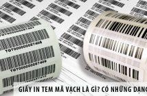 Giấy in tem mã vạch là gì? Có những dạng nào?