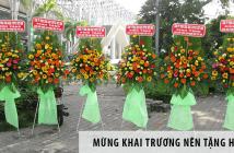 Mừng khai trương nên tặng hoa gì?